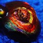 Fire Agate Gemstone Photo